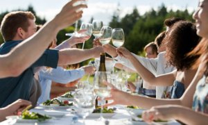 People-toasting-wine-glas-007